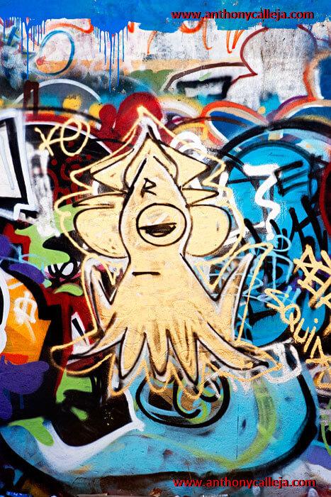 Hawaii Graffiti Art Abandoned Reservoir Diamond Head