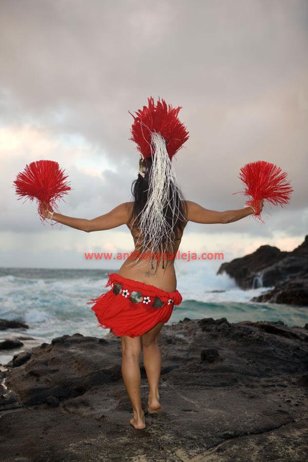 Hawaiian Hula Dance Photography on Basic Dance Steps