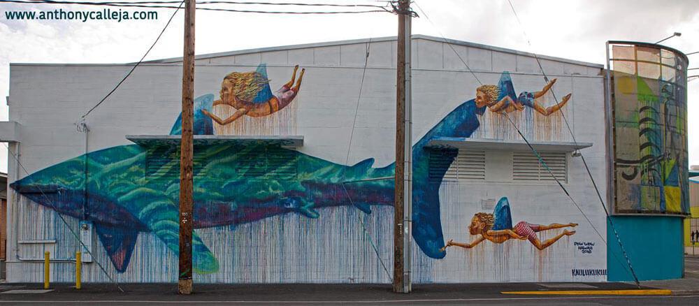 Honolulu Graffiti Art Kakaako Hawaii