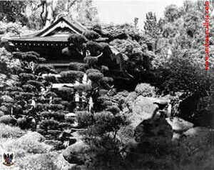 Japanese Tea Garden In San Francisco California 1981