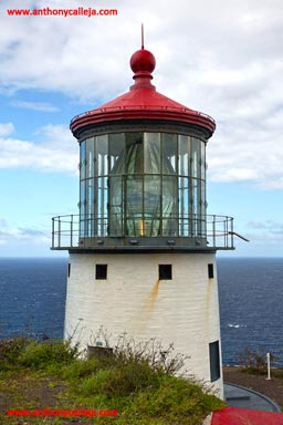 Makapuu Lighthouse, Makapuu Point, Oahu, Hawaii