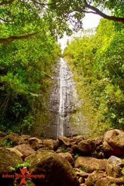 waterfalls of Manoa Oahu Hawaii