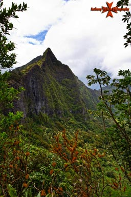 Koolau Mountain Range - Photographed from old Pali Road Oahu Hawaii