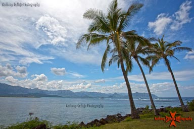 Seascape Photography Windward, Oahu, Hawaii
