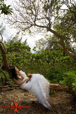 Honolulu wedding photography of bride in tree waimanalo beach wedding on Oahu