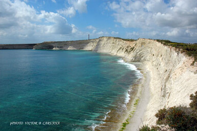 White Cliffs of Malta